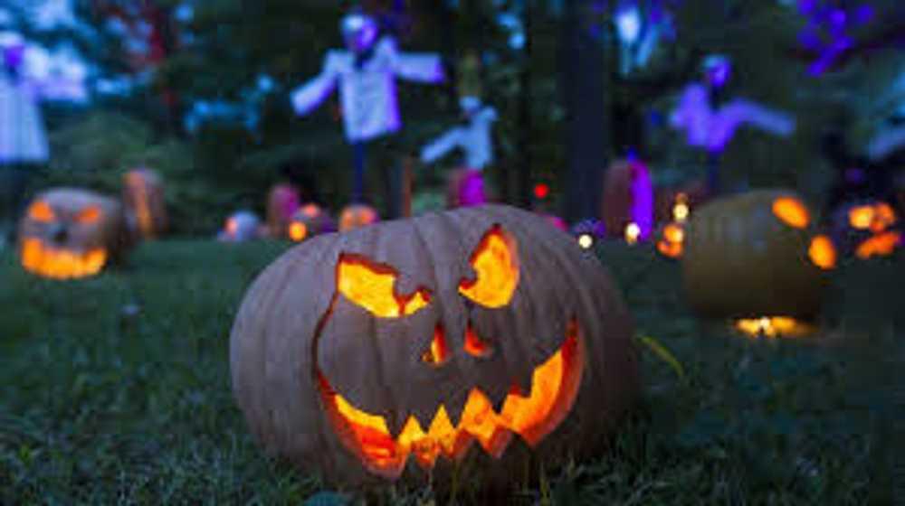 Spooky Spooky Boo!