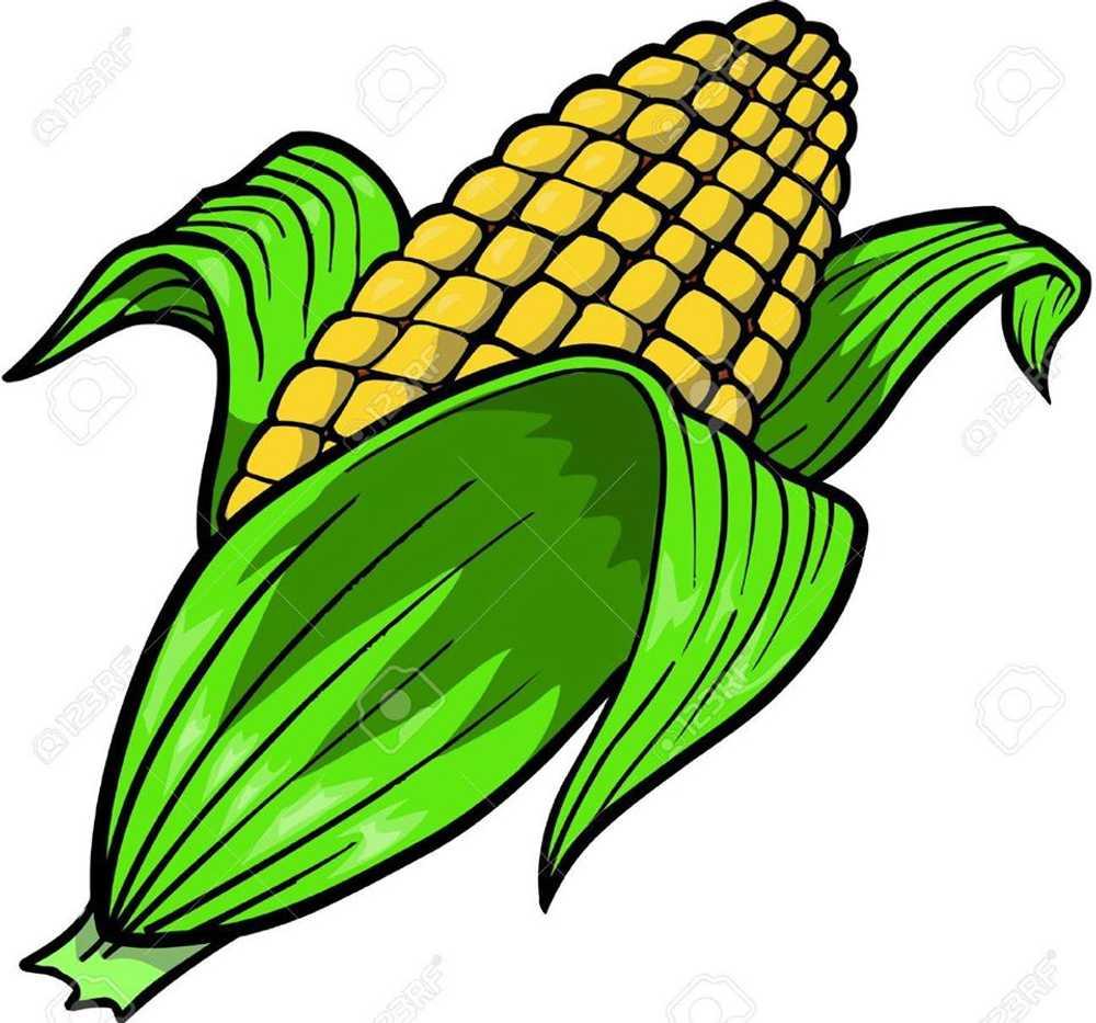 Corn Roast 2020