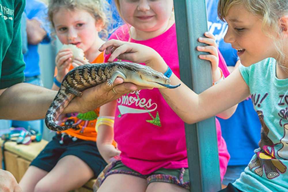 Animal Encounters Week
