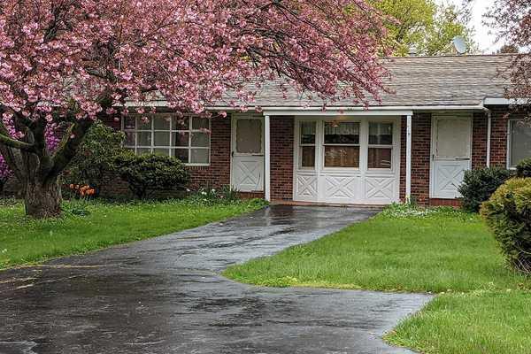 White Pine House Rental
