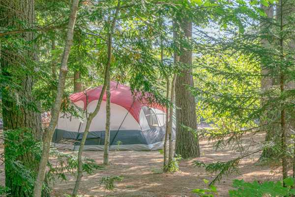 Basic Wilderness Tent Site