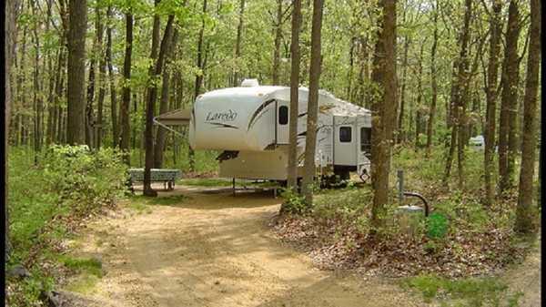 Forest Edge Pull-Through Campsite
