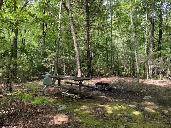 Yellow Trail Campsite (map #15)