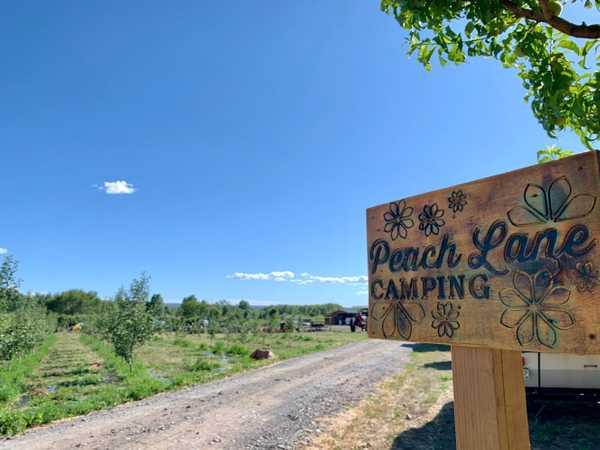 Peach Lane Camping