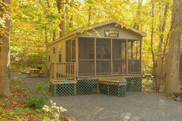 Rooster Ranch (176) (Pet Friendly)