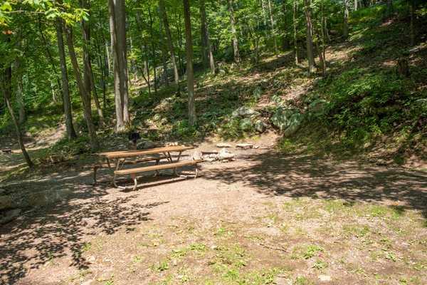 Mountainside Primitive Tent Site
