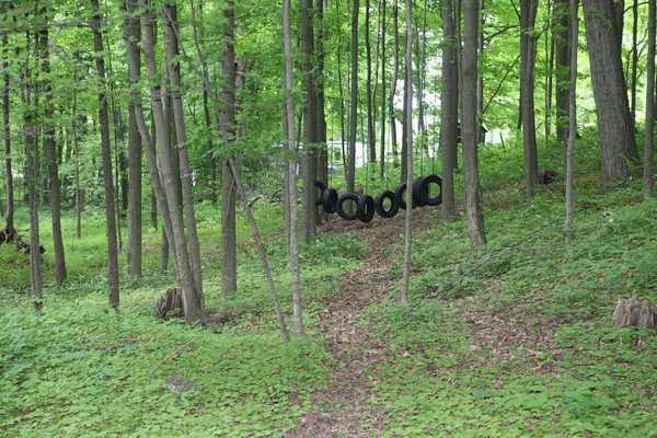 Park Image 12
