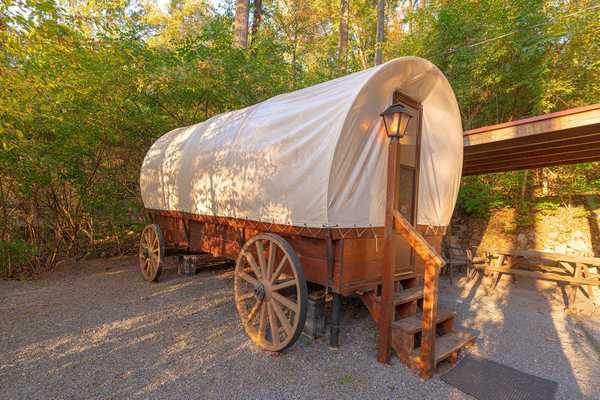 Covered Wagon (No Pets Allowed)