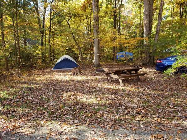 Primitive Tent Site