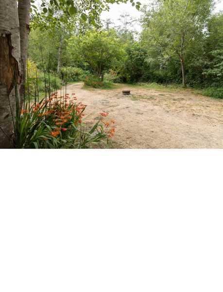 Riverwoods Remote Tent Site
