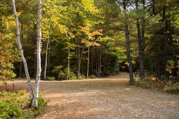 Park Image 25