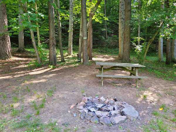 Large River Front Primitive Tent Site (up to 14 people)
