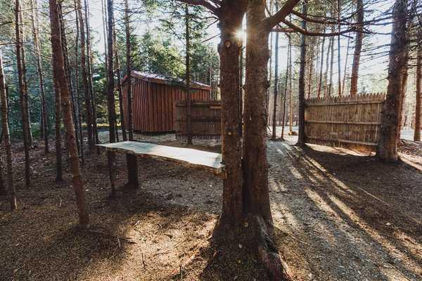 Primitive Tent/Hammock Site