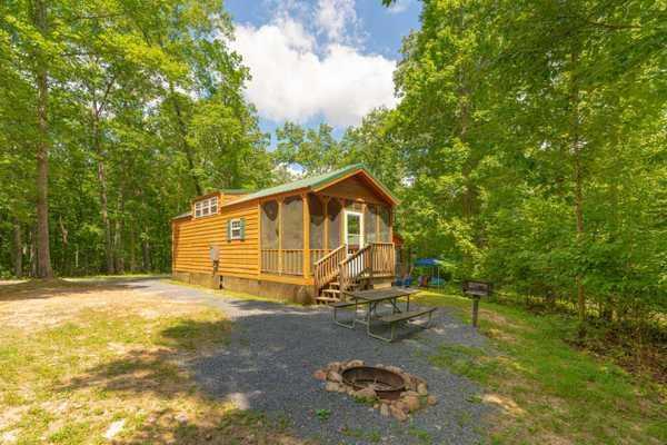 Yogi Bear Small Family Lodge