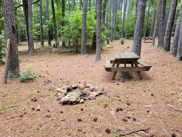 Small Primitive Tent Site (up to 6 people)