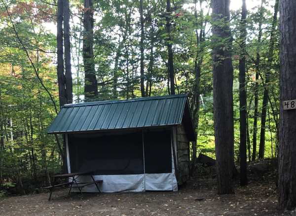 Adirondack Shelter Rustic