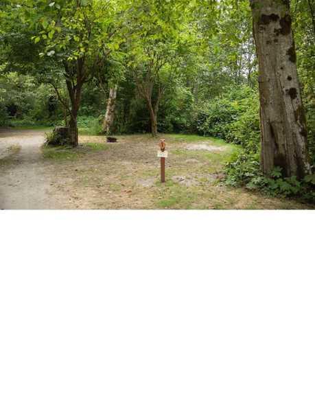 Alderwoods More Private Tent Site