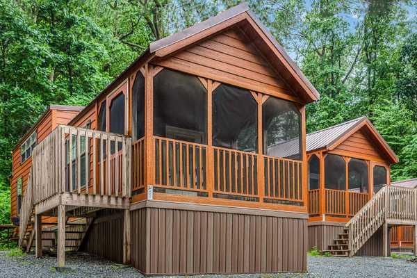 Forest Cove Cabin