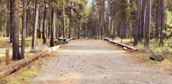 Lower Loop - Tent Site