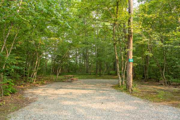 Park Image 15