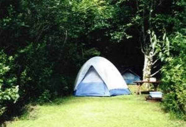 Primitive Tent
