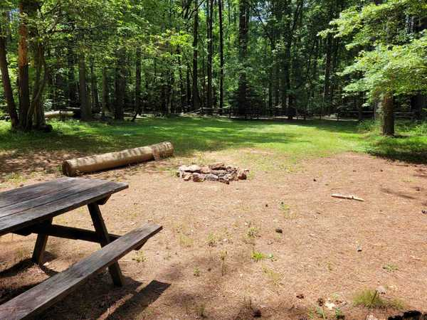 XL Group Primitive Tent Site (up to 20 people)