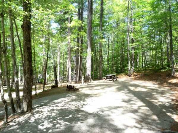 Pine Grove Tent Site
