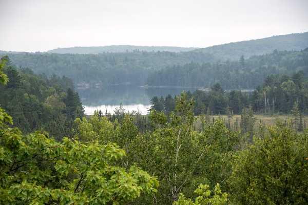 Cedar Grove Wilderness