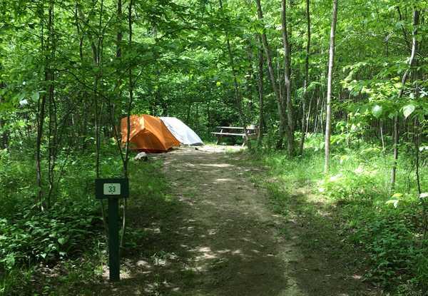 Basic Tent Walk Up Site (4 Max)