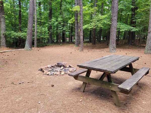 Large Primitive Tent Site (up to 14 people)