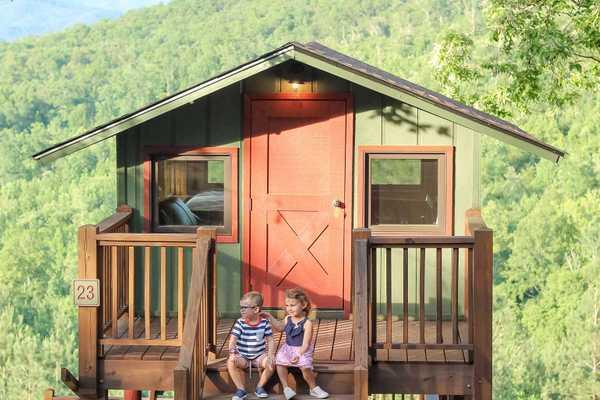 Mountain View Treetop Cabin