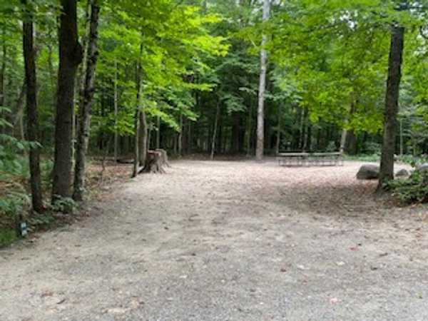 Wooded Tent - Double Site