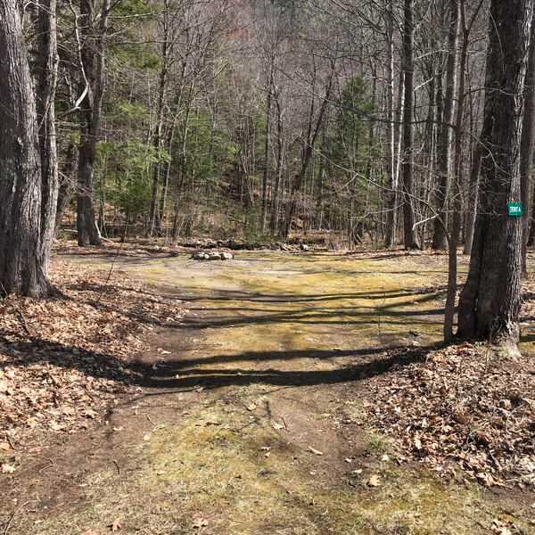 Primitive Creekside Tent Site
