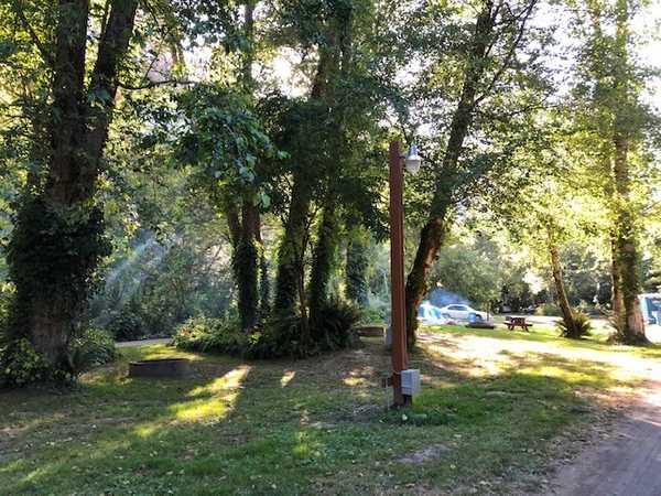 Alderwoods Water+Elec. Tent Site