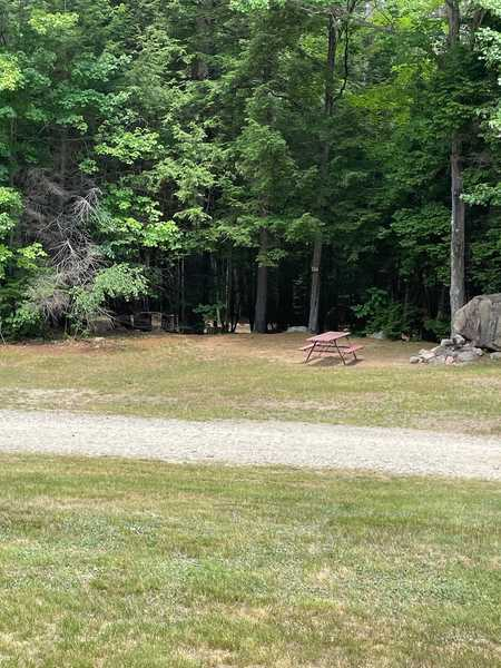 Partially Wooded Tent Site