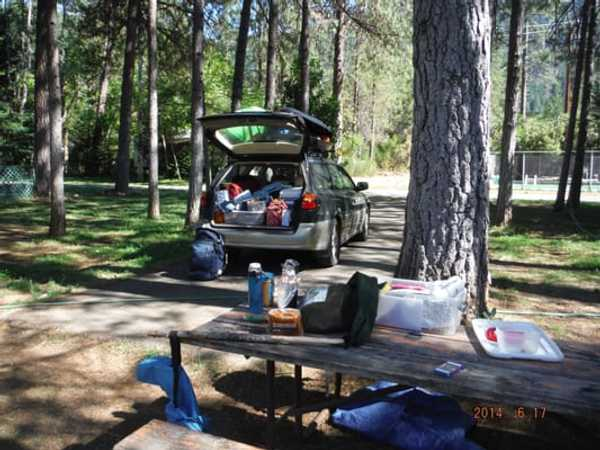 Dry Shaded Overflow Tent Site