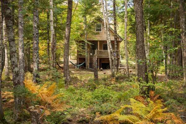 Wild Fox Cabins & Campground