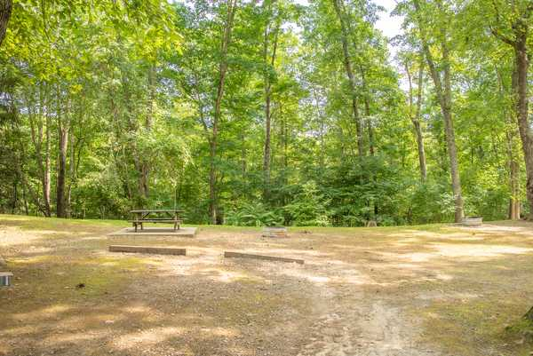 Lake Stephens: Primitive Tent Site